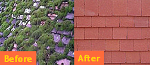 A tiled roof before and after Biocidal and Kolourseal roof coating treatment